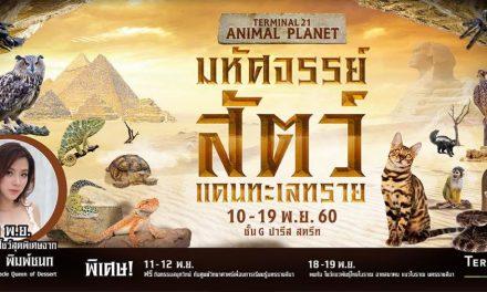 """เสาร์-อาทิตย์นี้ชวนเที่ยวงาน """"TERMINAL 21 ANIMAL PLANET มหัศจรรย์สัตว์แดนทะเลทราย"""""""