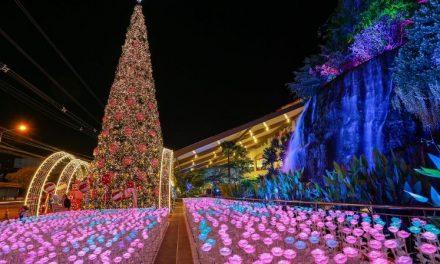 """เดอะมอลล์ โคราช สร้างปรากฏการณ์ทุ่งดอกไม้ illumination นับหมื่นครั้งแรกในภาคอีสาน ในงาน """"The Mall Shopping Center Joy of Giving Happy Factory"""""""